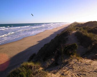 Along The Ninety Mile Beach