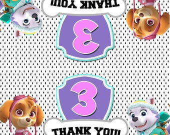 Paw Patrol Bag Toppers - Personalized- Double Sided Boy/Girl Paw Patrol Thank You