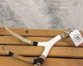 Artform Deer Antler