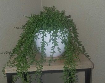 artificial house plant