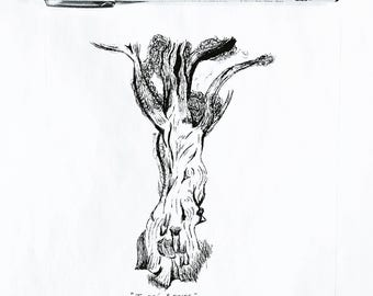 Tree Series - Jomon Sugi