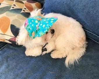 Floral Dog VIsor