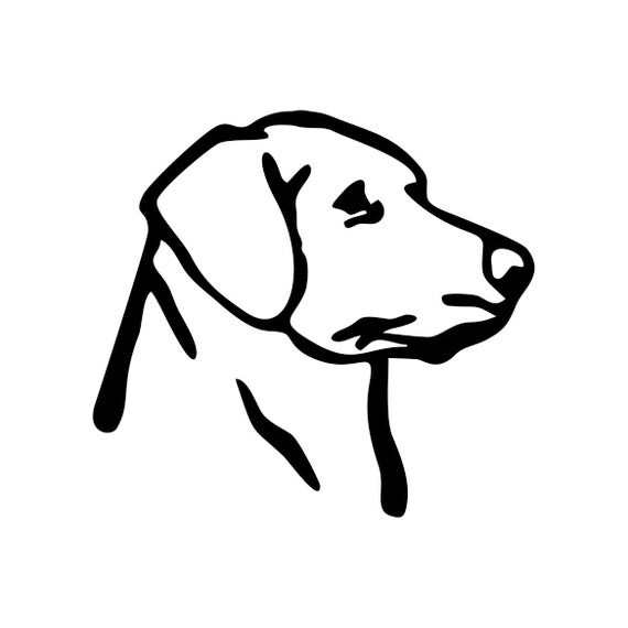 Labrador Retriever dog Graphics SVG Dxf EPS Png Cdr Ai Pdf