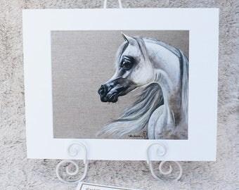 Khalifah.   Limited Edition Fine Art Print, Arabian Horse