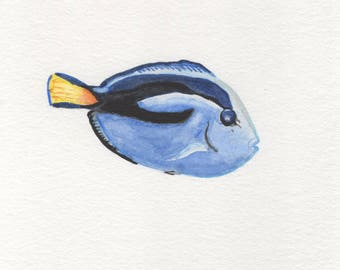 Dory Blue Tang Watercolor Painting Digital Download