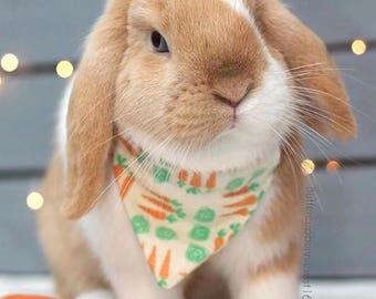 HOPPIN' AROUND Bunny Bandana