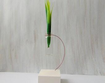 Mini Bottle Vаse, Hanging Glass vase, Geometric Vase, Mini Glass Vase, Test tube bud vase