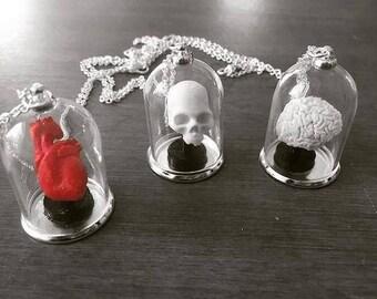 3D Printed Human Anatomy Bell Jar Necklaces