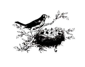 Robin and Babies in Nest, unmounted bird rubber stamp, spring, summer, mother bird, Sweet Grass Stamps No.9