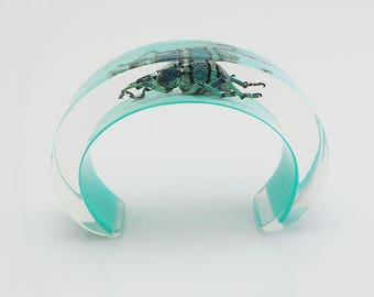 Blue lucite cuff bracelet with real exotic insect
