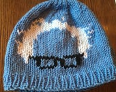 Bernie Sanders beanie in front Resist in back knitted hat blue and white protest march