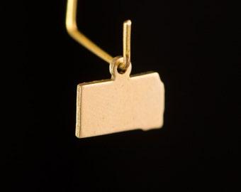 Raw Brass Tiny South Dakota Blank State Charm Drops (2) chr229S