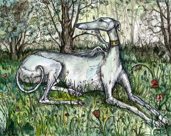 Greyhound  Illustration Art Print
