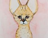 Seval Kitten Fine Art Print