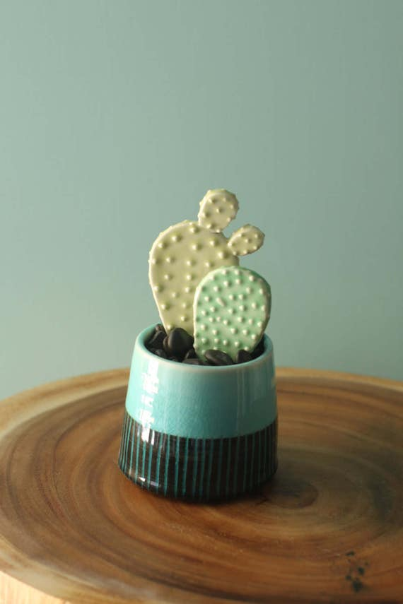 faux cactus with container