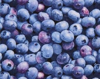 Blueberry Fabric Etsy