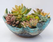 ceramic planter pot garden plant bowl window garden wavy planter