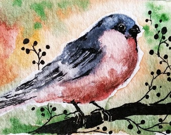 Original Bird Watercolor ACEO Bullfinch Miniature Painting