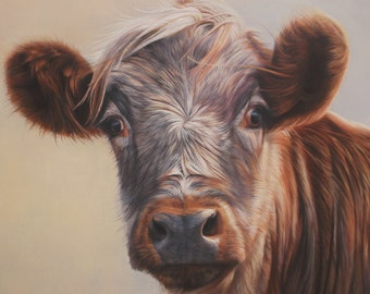 SAM DOLMAN Cow Animal Limited Edition Print