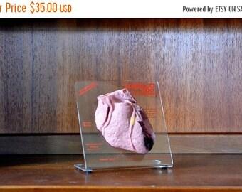 SALE 25% OFF vintage anatomical model heart pharmaceutical display