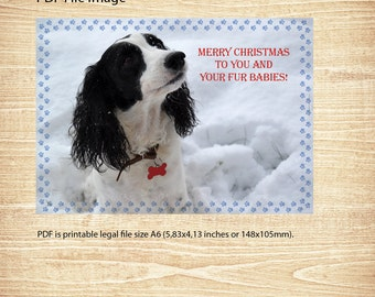 Christmas Greeting Card, Dog, Instant Download, Printable PDF, Merry Christmas to you and your fur babies