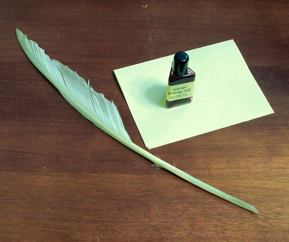 Hand Cut Goose Feather Quill For Calligraphy And Medieval