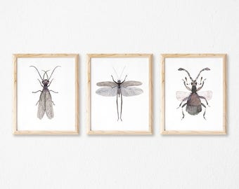 Grey Insects Set of 3 print watercolor painting nature nursery kids 5 x 7 ; 8 x 10