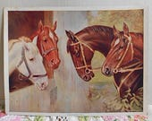Reserved A NEIGHBORLY CALL Litho Horse Print by Atkinson Fox 4 Horses Rich Brown Chestnut & White Colors, 1912 Signed 6 x 8 to Frame