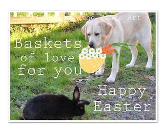 Easter CARD, Labrador Easter Bunny Card Lab Brings Bunny Easter Basket