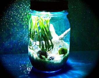 Nightlight Beach Marimo Terrarium Kit ~ Beach in a Bottle ~ Blue Mason Jar Terrarium Nightlight ~ Solar Lid ~ Marimo ~ Beach Decor ~ Gift