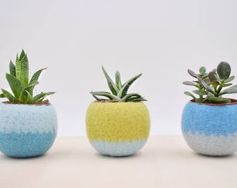 Windowsill planter / Succulent planter / Felt plant vase / pod / mother day gift /  gift for her / 7th anniversary gift / Set of three
