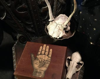 Antique Palmistry Box Old Wooden Box with Palm Reader's Hand at Gothic Rose Antiques