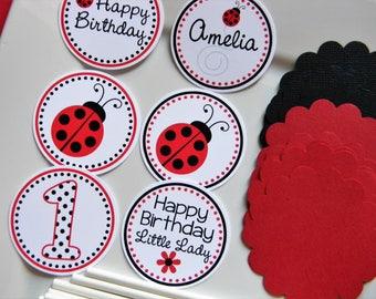 Ladybug Birthday Party Personalized DIY Cupcake Topper Kit, Ladybug Party Decorations, Ladybug Cupcake Toppers - Set of 12