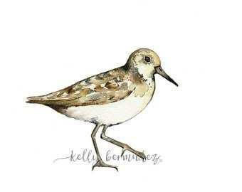 Sand Piper Watercolor / Printable Art / Printable Watercolor / Instant Download