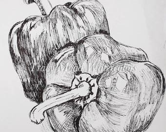 garden art kitchen decor illustration bell peppers black and white pen and ink