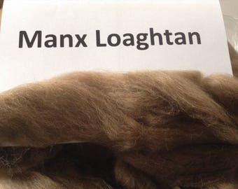 Manx Loaghtan (brown) roving