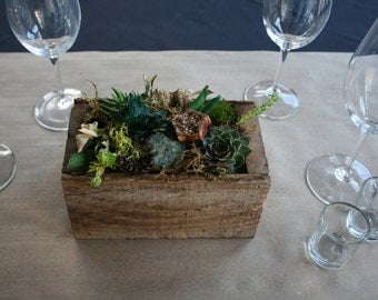 Rustic Reclaimed Wood Succulents Planter -BP06