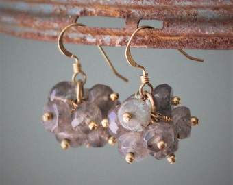 Tate Earrings: Stunning faceted labradorite beads wire wrapped with 14k gf with tiny 14k gold filled beads and earwire