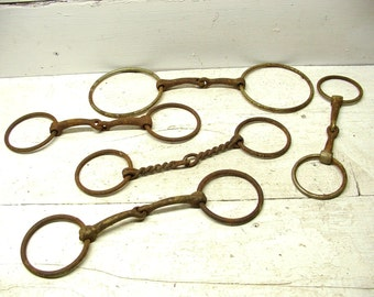 Cowboy Decor, Horse Bit Collection Lot Western Theme Rusty Tack