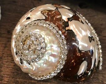 Embellished Turbo Sarmarticus Shell With Swarovski Crystals Coastal Home Decor Seashells Beach Wedding