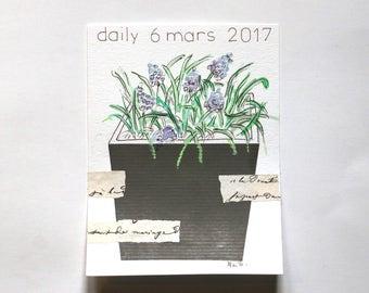 daily 6 mars 2017