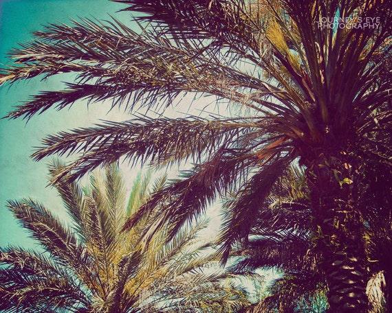 Clearance Sale - Beach photography, fine art photograph, retro art, palm tree, tropical decor, nature print - Summer Living