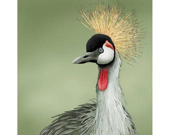Grey Crown Crane 8x8 signed fine art print. Graceful bird of heaven African crane Bird lover gift
