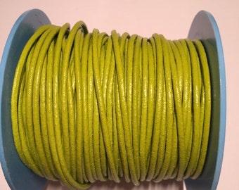 4 ft 2mm Pistachio Leather Cord,