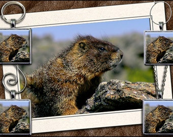 Marmot Photo Note Card Set - Marmot Pendant, Marmot Keyring, Marmot Ornament, Marmot Wine Charm - Wildlife Greeting Card Handmade (GP43)
