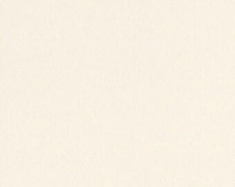 8.5 x 11 Bazzill Cardstock - Buttermint