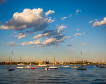 Sailboats in the Boston Inner Harbor, Boston Massachusetts. | Photo Print, Stretched Canvas, or Metal Print.