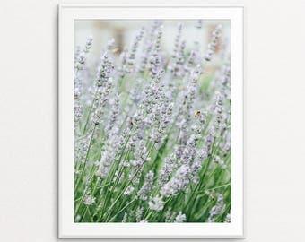 Lavender Photo - Lavender Print, Floral Photography, Home Decor, Dreamy Decor, Lavender Image, Floral Print Art, Floral Wall Art