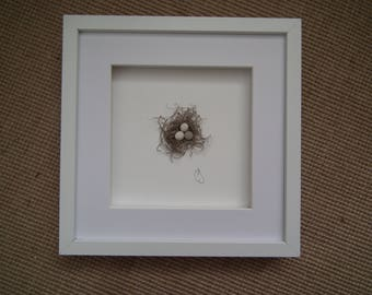 3D Birds nest wall decor, shadow box frame