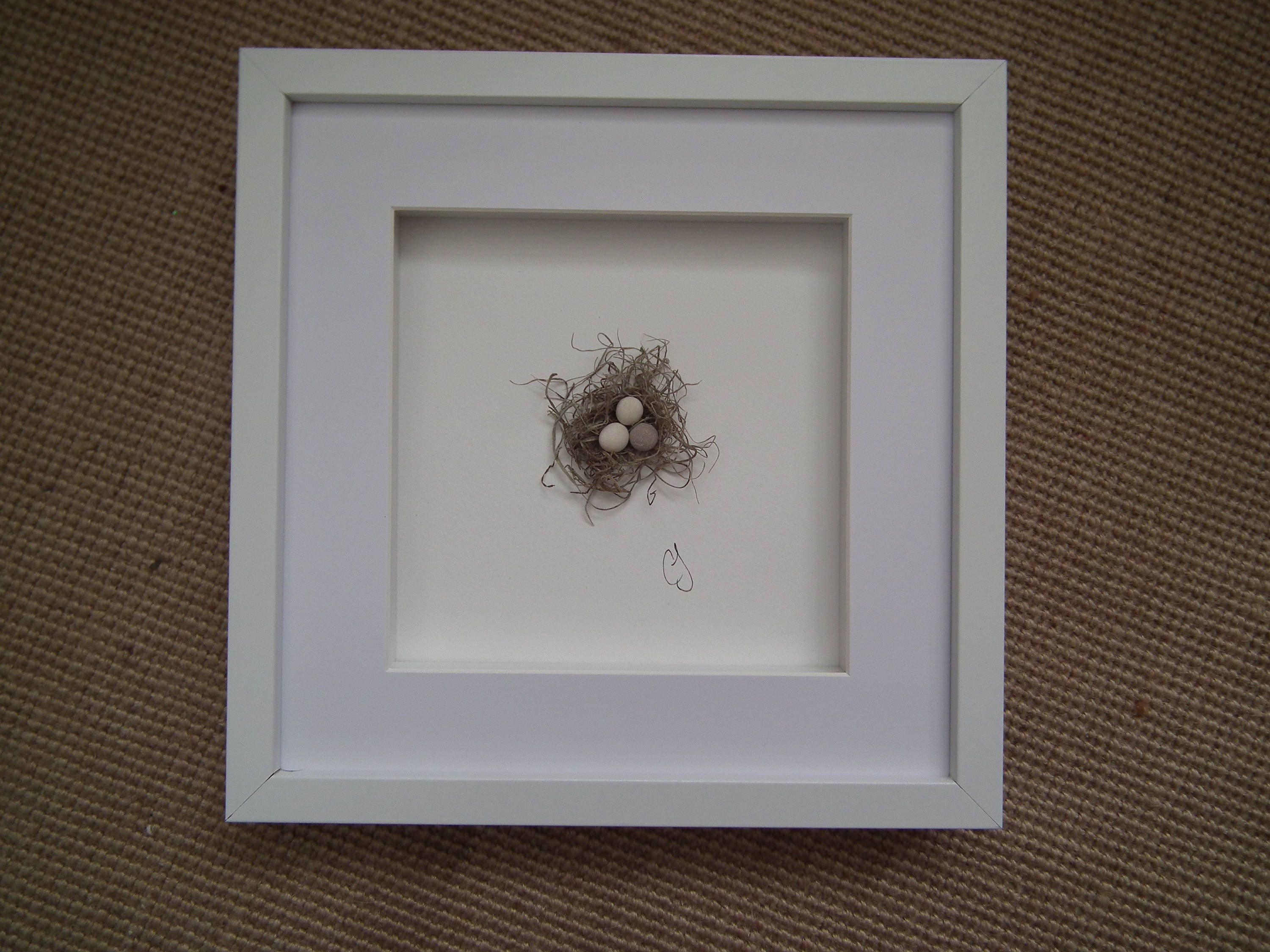 Wall Art Shadow Box : D birds nest wall decor shadow box frame